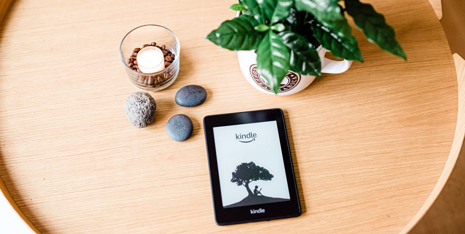 Auf dem eBook Reader lesen